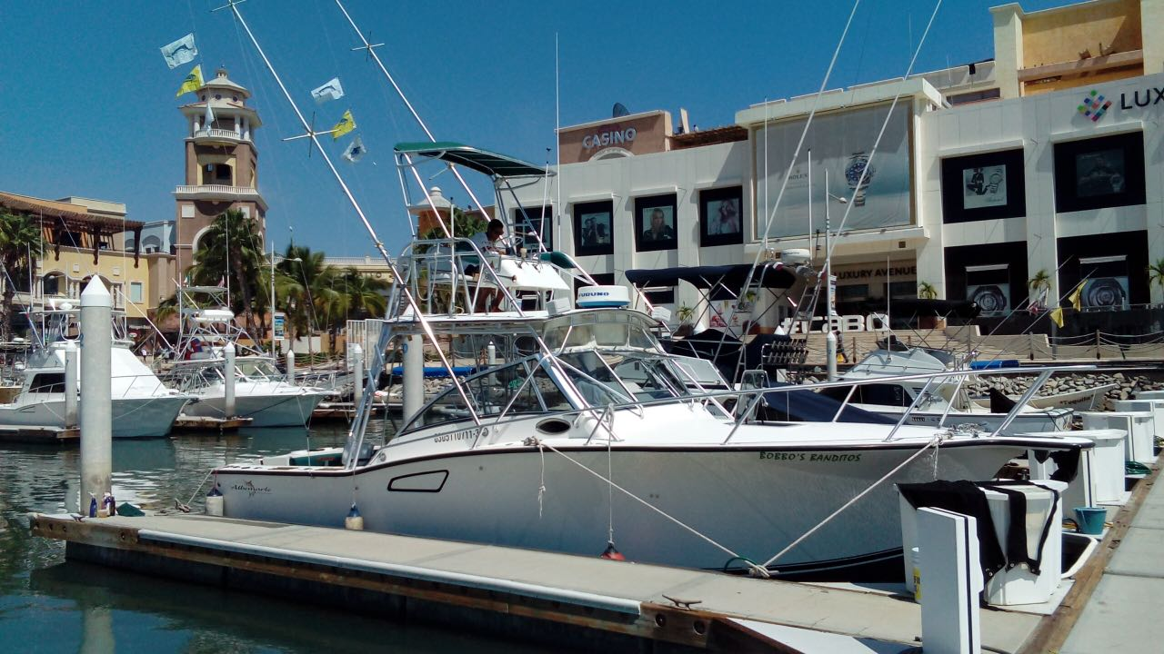 Bobbos Banditos Cabo San Lucas Fishing Charters