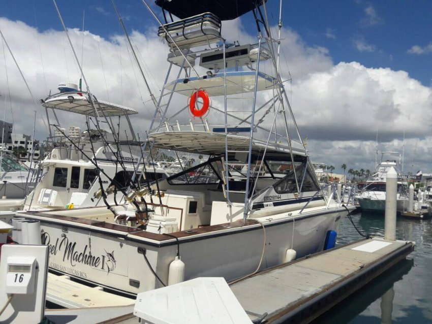 Reel Machine Cabo San Lucas Fishing Charters